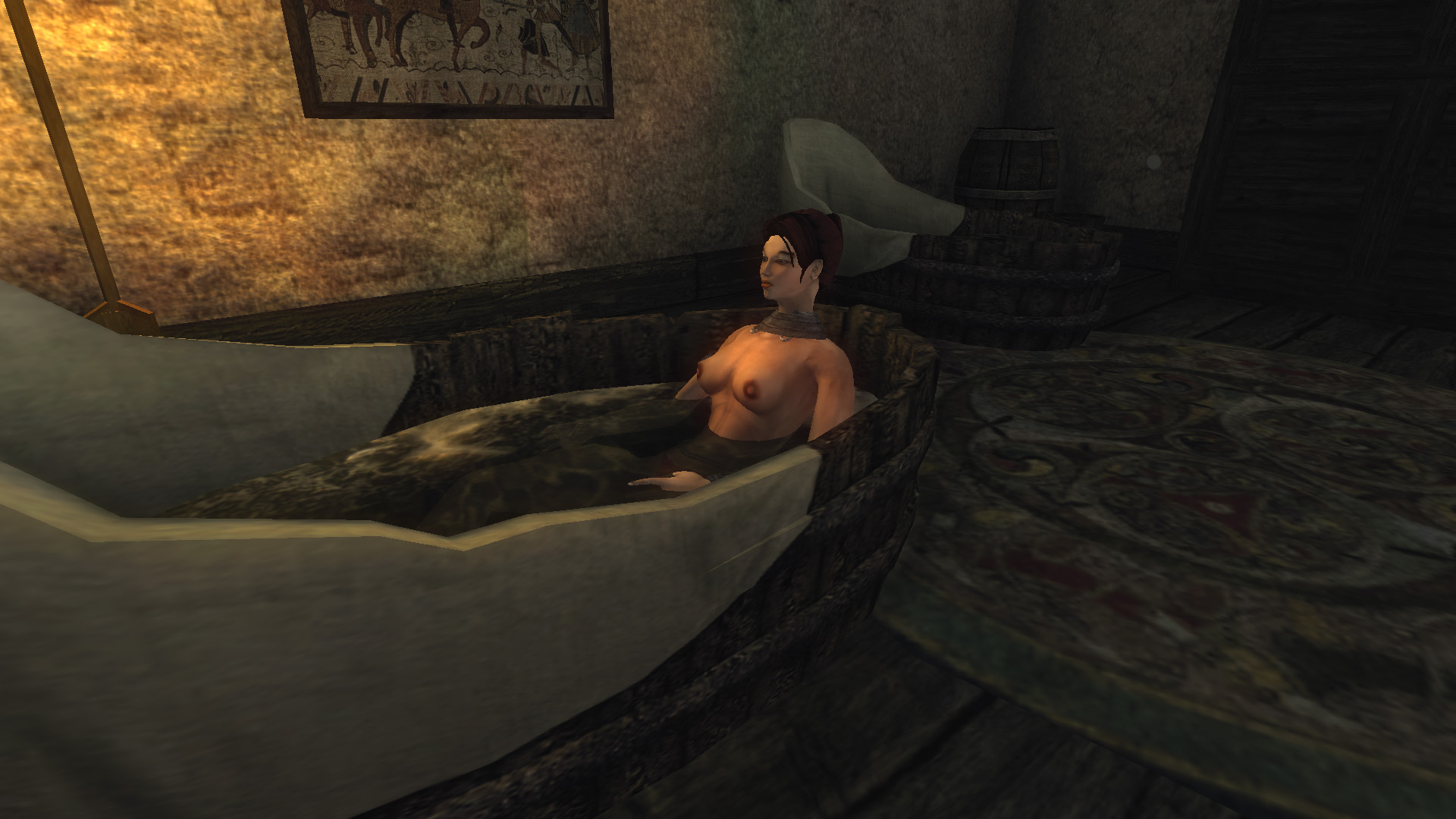 Sex mod for gothic 3 sexy picture